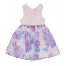 Rare Editions Toddler Girls Sleeveless Floral Dress
