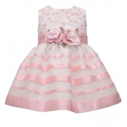 Bonnie Jean Baby Girl  Embroidered  Organza Ribbon Dress